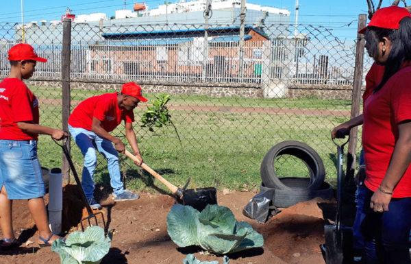 powafix mandela day planting
